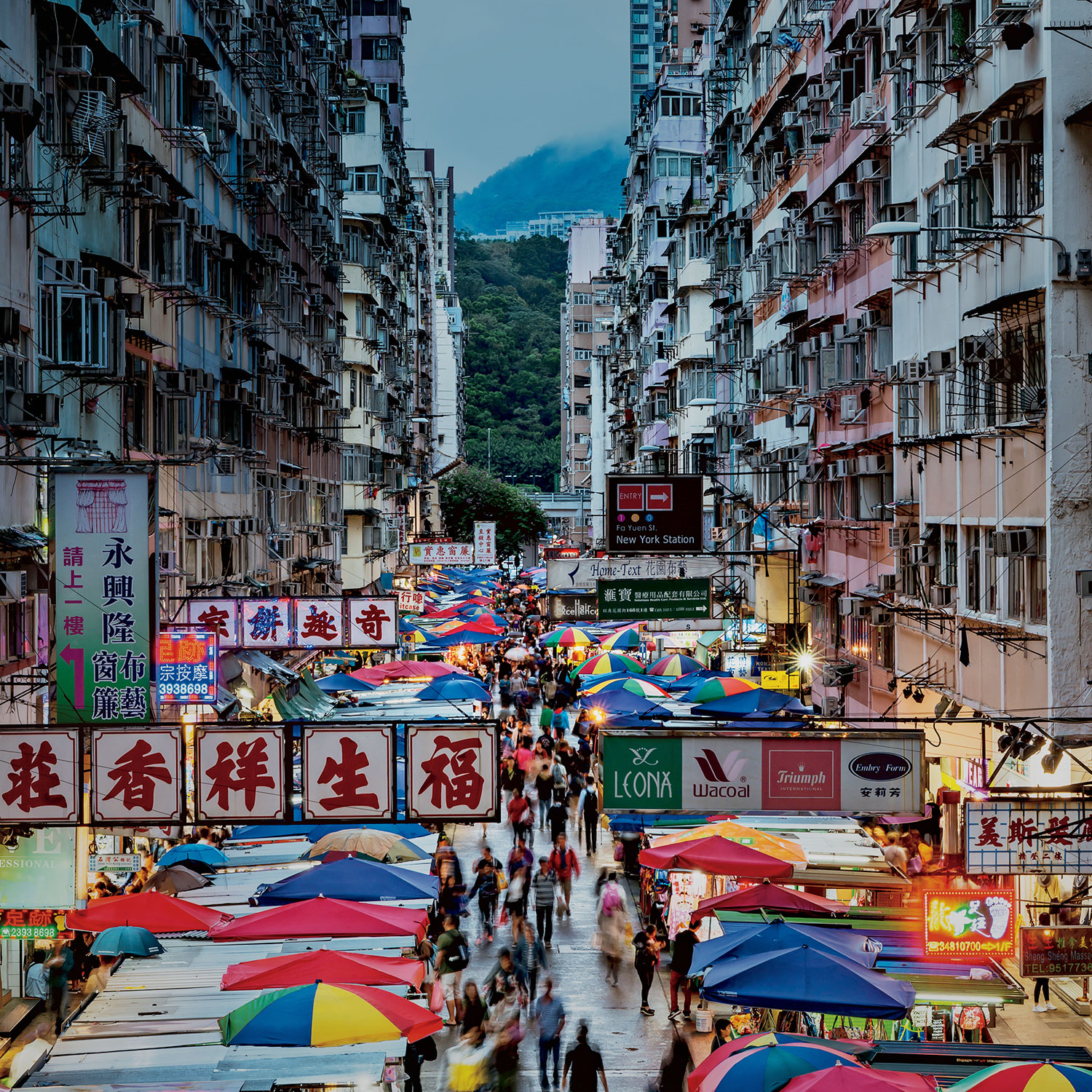 City of Hong Kong