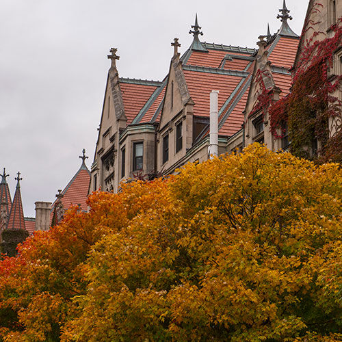 Photo of Campus Buildings in Fall