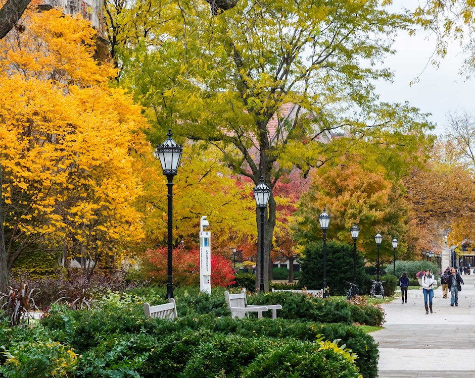 Students walking in the quad during fall